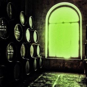 Bodegas Gonzalez Byass - Jerez - Spain - Wineries - Wine (by @domingon1946)