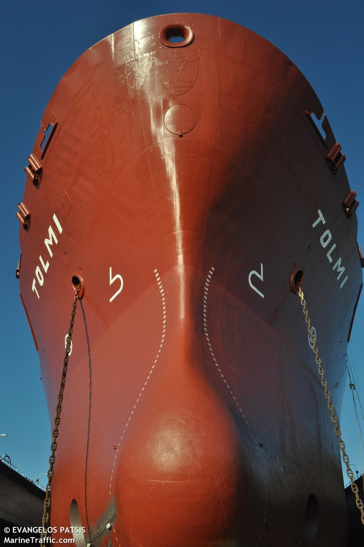 Bulk carrier TOLMI