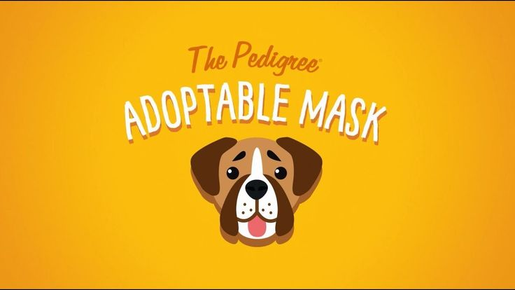 Introducing the PEDIGREE® Adoptable Facebook Mask