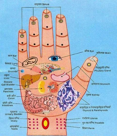 .: Hands Reflexology, Essential Oil, It Work, Acupressure Points, The Body, Health Tips, Martial Art, Weights Loss, Alternative Medicine