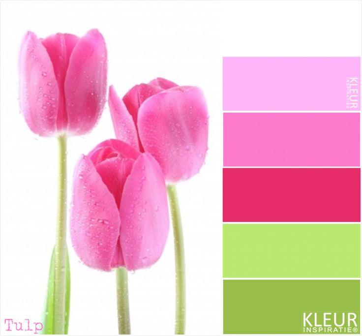 TULP - Kleurenpalet fris roze en groen. Mooie kleuren samen voor een meisjes kamer