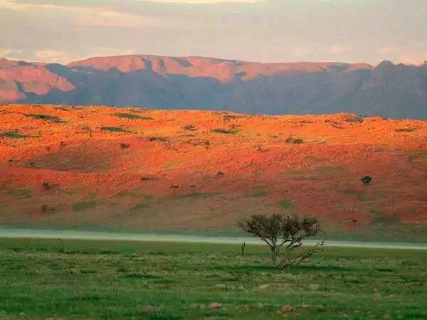 Wolwedans Mountain, Namibia