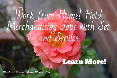 Work from Home! Field Merchandising Jobs with Set and Service / Learn More!