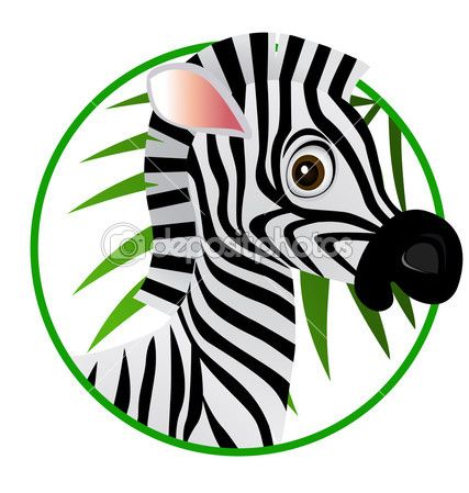 мультфильм зебры — Стоковое векторное изображение © dagadu #3082835