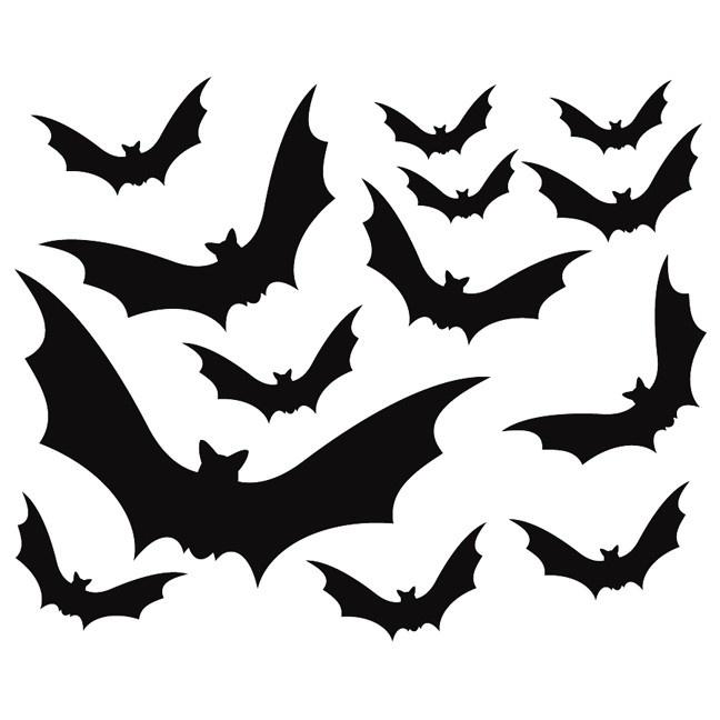 32 Best Bats Images On Pinterest Bats Wild Animals And
