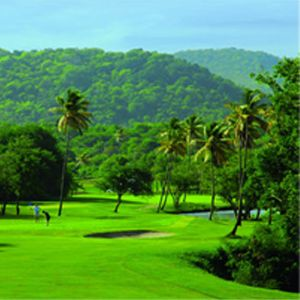 The landings st Lucia