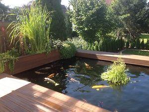 Details zu schwimmende pflanzeninsel f r koi teich oval for Koi pool water gardens thornton