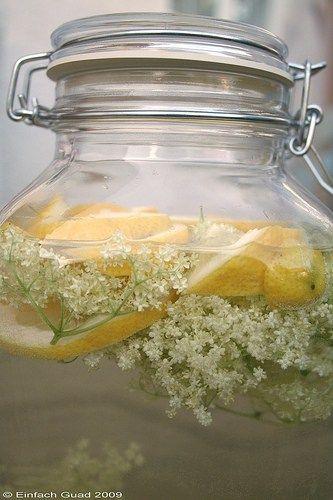 So, jetzt habe ich auch die letzten Holunderblüten unseres Strauches im Garten geplündert :-) Eine Freundin hat mich auf dieses Rezept aufmerksam gemacht und das hört sich so lecker an, daß ich den…