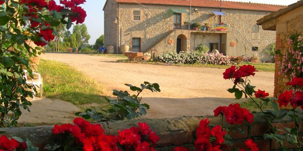 La Valentina Nuova Farmhouse in Maremma: few km from the seaside, surrounded by the nature, it offers cosy independent apartments. ( #tuscany, #italy)