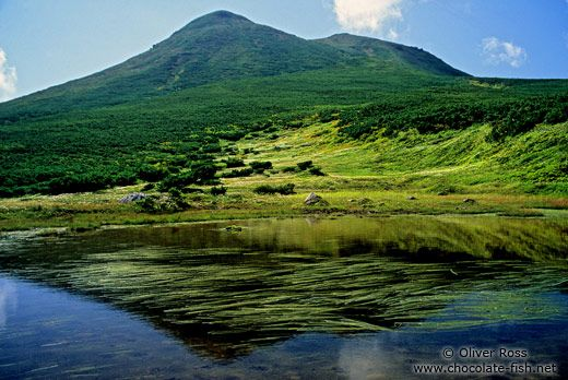 Visit the island of Hokkaido, Japan...the home of the Ainu people!