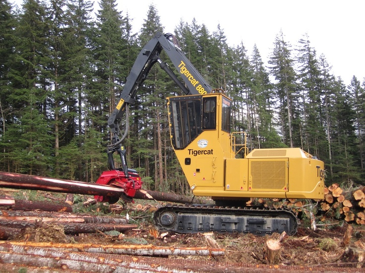 107 best images about Logging, swamp logging, Logging ...