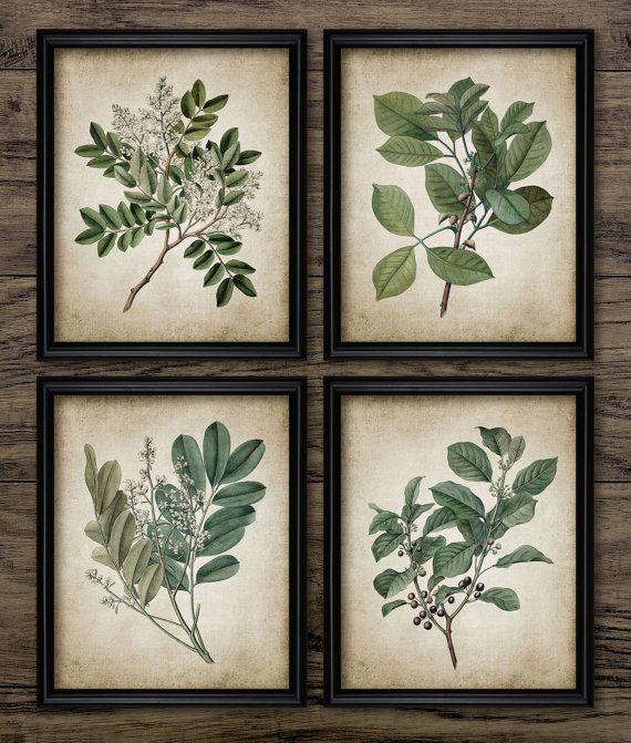 Green Plant Print Set of 4 - Vintage Leaves Botanical Art Decor - Green Digital Printable Art - Set Of Four Prints #676 - INSTANT DOWNLOAD