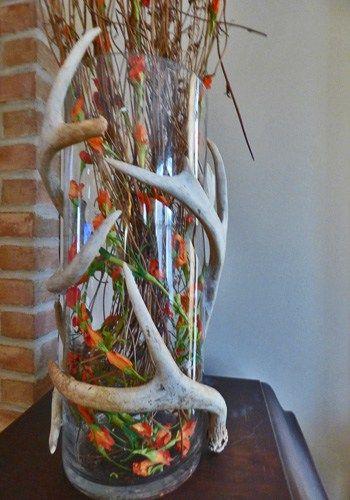 A new antler craft.                                                       …
