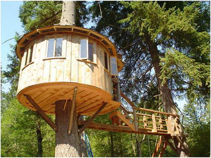 Tree house home floor plans