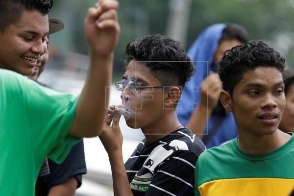 Jóvenes salvadoreños piden despenalización del cultivo y consumo de marihuana