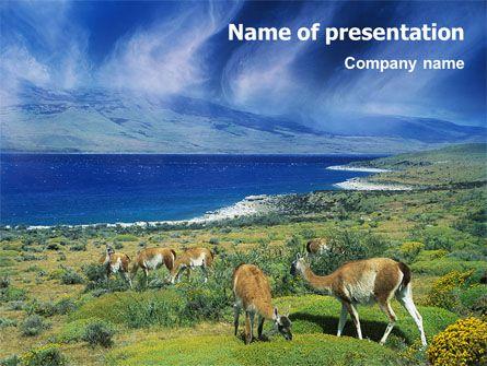 272 best animals and pets presentation themes images on pinterest httppptstarpowerpointtemplatepampa toneelgroepblik Gallery