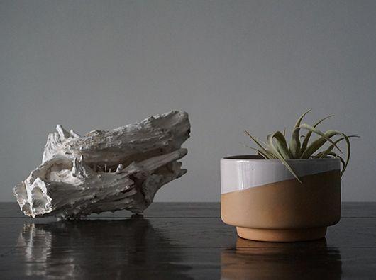 """"""" Lagos del Mundo """" のシンプルかつ実用的な 陶器のプランターポットです。"""
