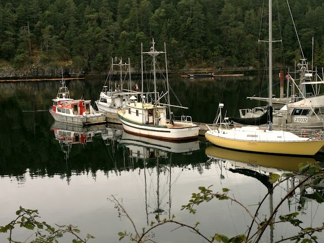 One of the most idyllic, scenic and beautiful areas of the Sunshine Coast (just north of Vancouver, BC, Canada). Secret Cove is a small harbor town that is just so damn beautiful it will make your soul sigh