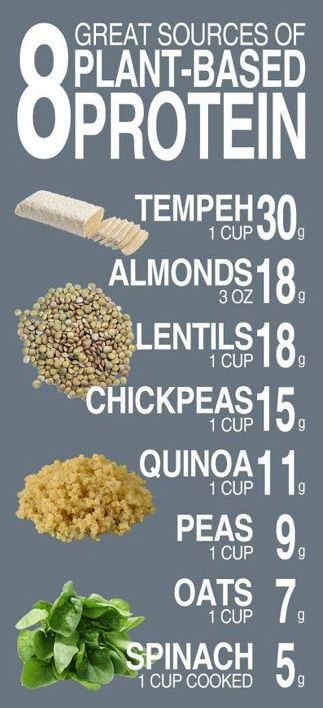 <3 8 great vegan sources of protein <3