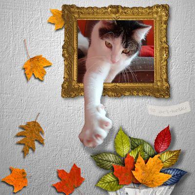Gucio jesiennie
