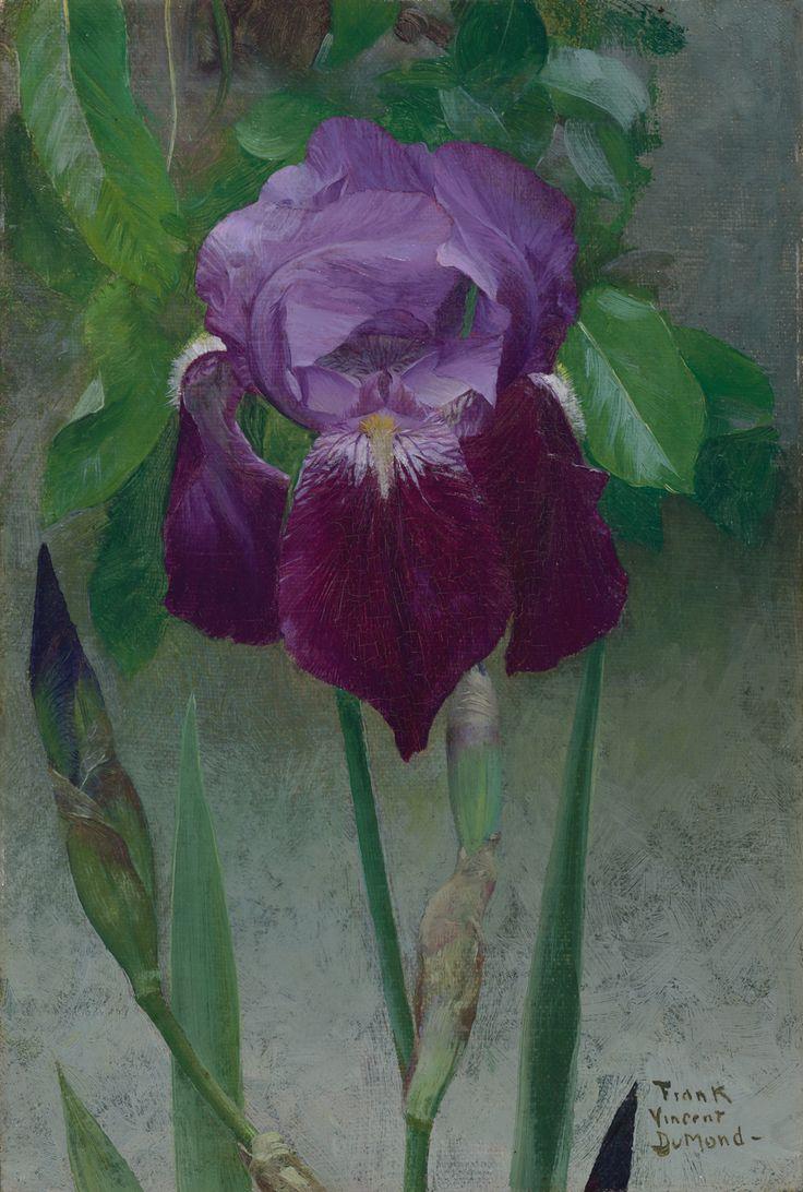 Frank VIncentDuMond / Iris / ca. 1895 - 1902 / Oil on canvas mounted on board / VMFA