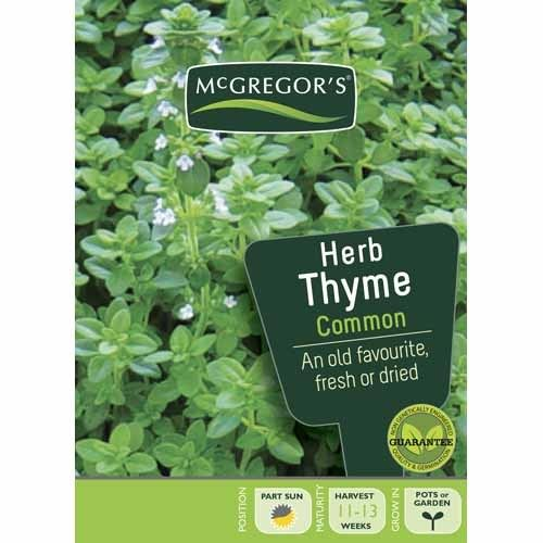 Common Thyme  Herb Seed