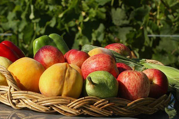 Should we be avoiding fruit?