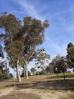 Lookout Tower, Rosalind Park, Bendigo