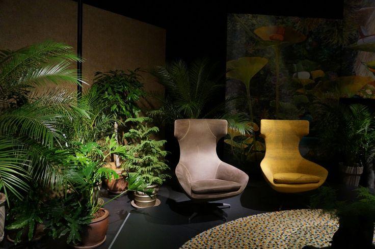 Caruzzo | Leolux #New #Green #Jungle #Inspiration #Leolux #201605