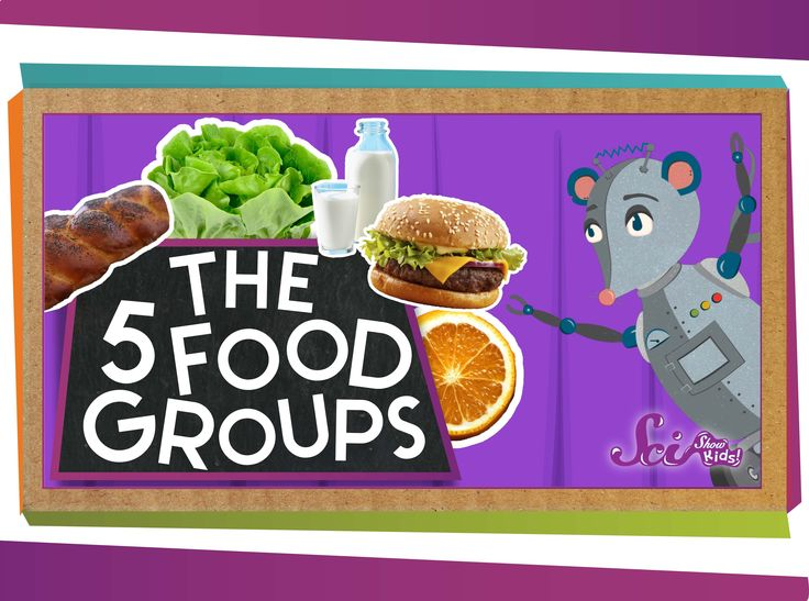 Learn about our 5 main food groups with Jessi and Squeaks, then see if you can name them all! ---------- Like SciShow? Want to help support us, and also get ...