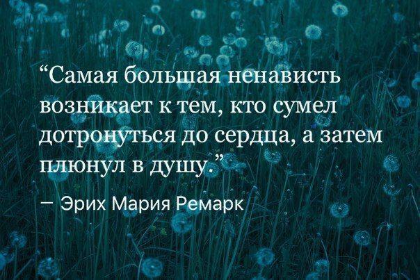 мудрость жизни