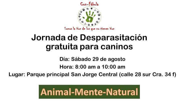 Jornada de desparasitación gratuita para caninos. 29 agosto #tenenciaresponsable
