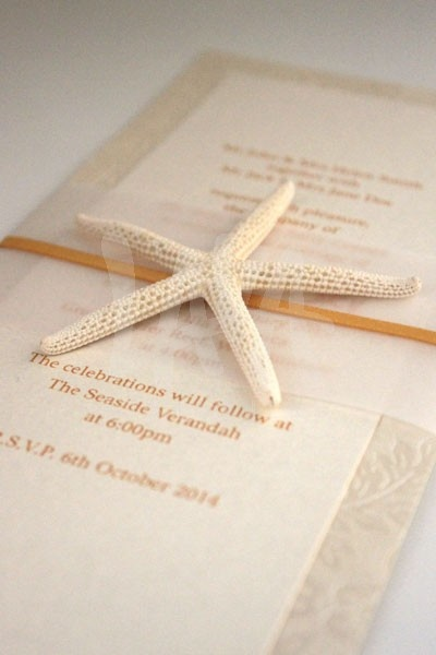 http://lavastationery.com.au/invitations/wedding/beachside-dl-flat-invitation.html