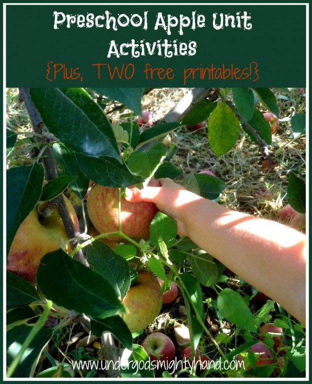 Preschool Apple Unit Activities {Plus, two FREE printables!} via UnderGodsMightyHand.com