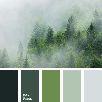 25 best ideas about green color schemes on pinterest - Dark green colour combination ...