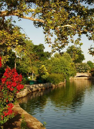 The romance of summer in Nashville's Centennial Park