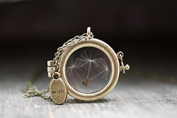 Hey, I found this really awesome Etsy listing at https://www.etsy.com/ru/listing/188865109/window-locket-necklace-with-real-dried