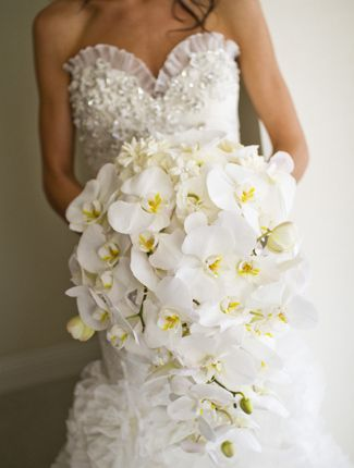 Enchanting Winter Wedding Bouquets   The Knot Blog – Wedding Dresses, Shoes, & Hairstyle News & Ideas