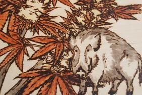The Hog, Cannabis Paintings on wooden canvases by Darianne Dawn, www.dariannedawn.ca