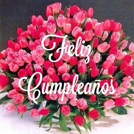 Frases-Para-Felicitar-Cumpleaños-1.png.jpg (564×564)