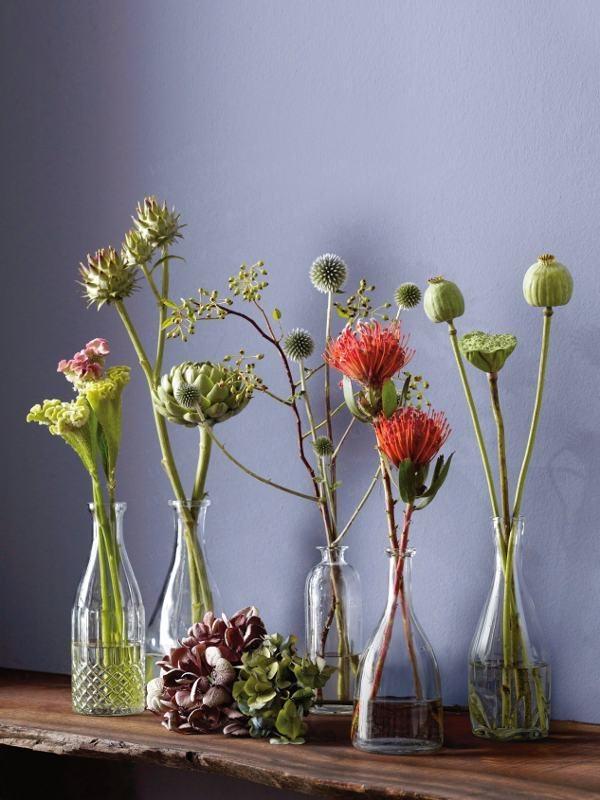 Pflanzen-Deko: Wahre florale Meisterwerke