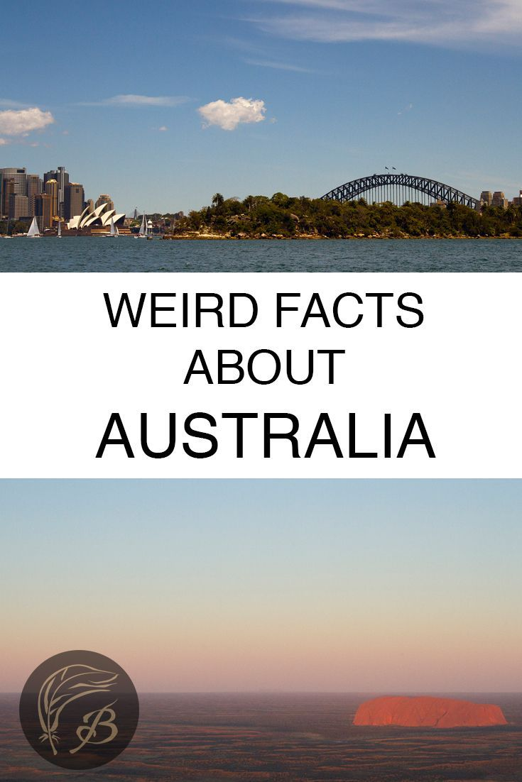 Australia is beautiful, diverse but also undeniably odd. Here are 34 weird facts about Australia, that you may or may not have known. via /birdgehls/