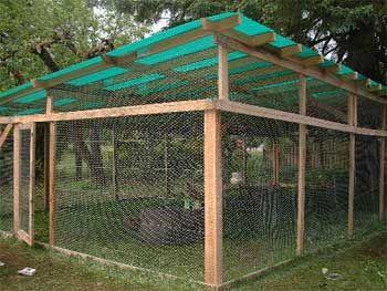 cute cat enclosure