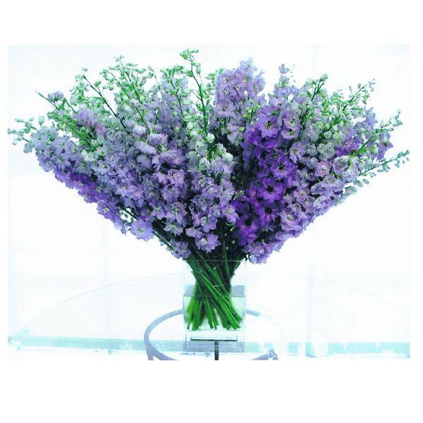 June Wedding Flowers: Best 25+ December Flower Ideas On Pinterest