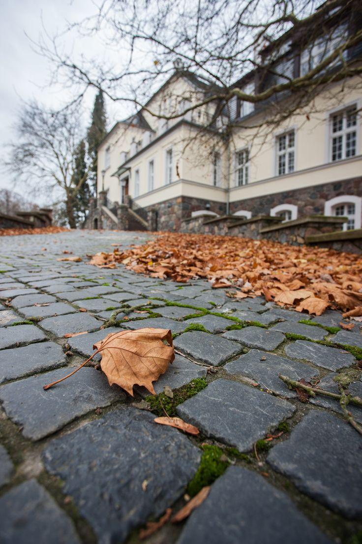 #autumn www.bbhome.pl