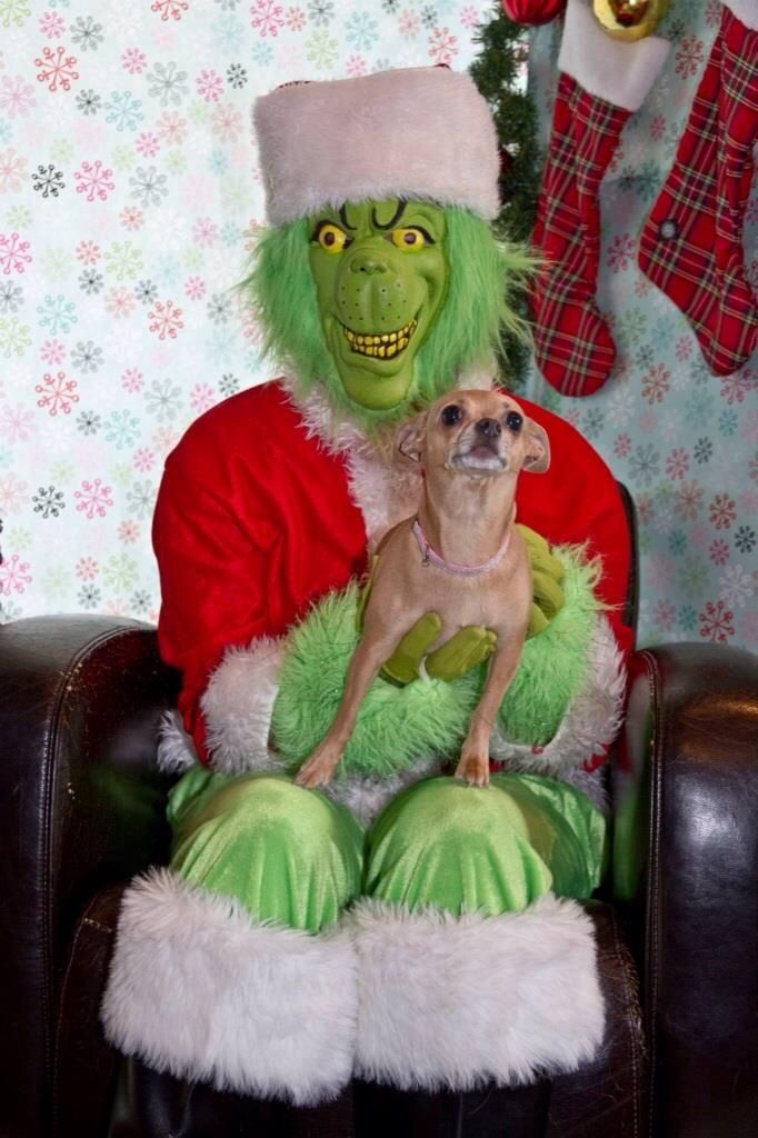 Lucy and the grinch 2013