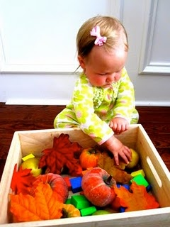 Autumn Sensory Bin for babies: use larger items they can't swallow but having different textures.