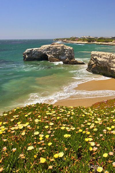 Santa Cruz, California                                                                                                                                                                                 More