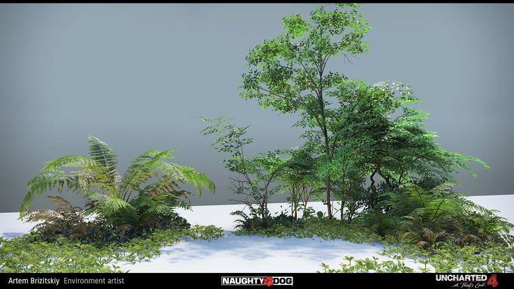 Uncharted 4 - vegetation by Artem Brizitskiy on ArtStation.