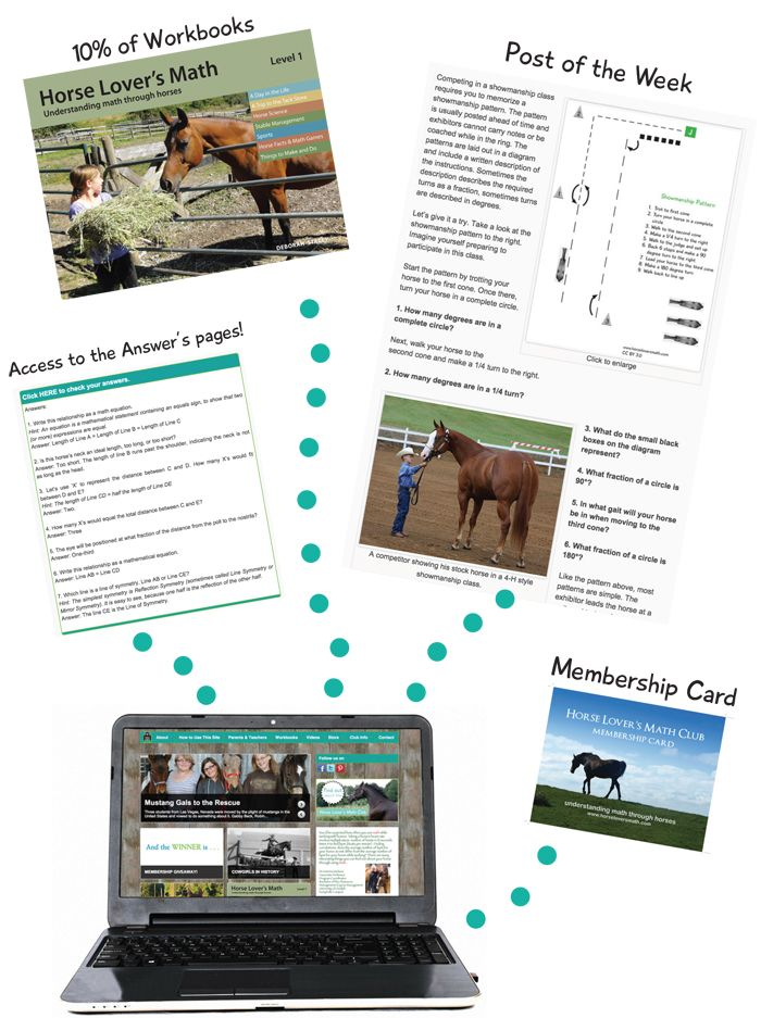 math worksheet : 1000 images about horses and education on pinterest  crazy kids  : Coupon Math Worksheets